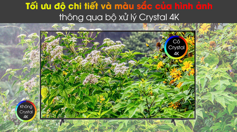 Tivi LED 4K Samsung UA75AU8100 - Crystal 4K