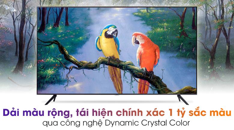 Smart Tivi Samsung 4K 50 inch UA50AU7200 - Đắm mình trong khung hình với sắc màu trong trẻo tuyệt đẹp qua công nghệ Dynamic Crystal Color