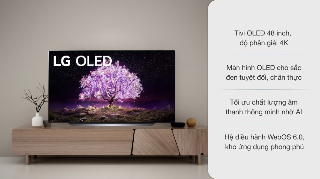 Smart Tivi OLED LG 4K 48 inch 48C1PTB