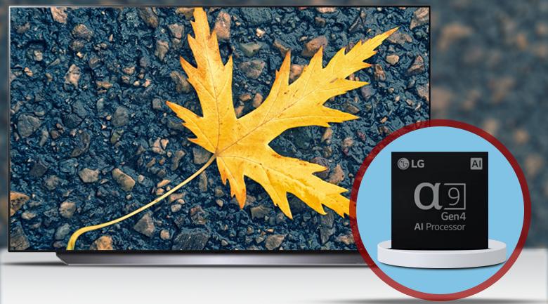 Bộ xử lý AI 4K α9 thế hệ thứ 4 - Smart Tivi OLED LG 4K 65 inch 65C1PTB