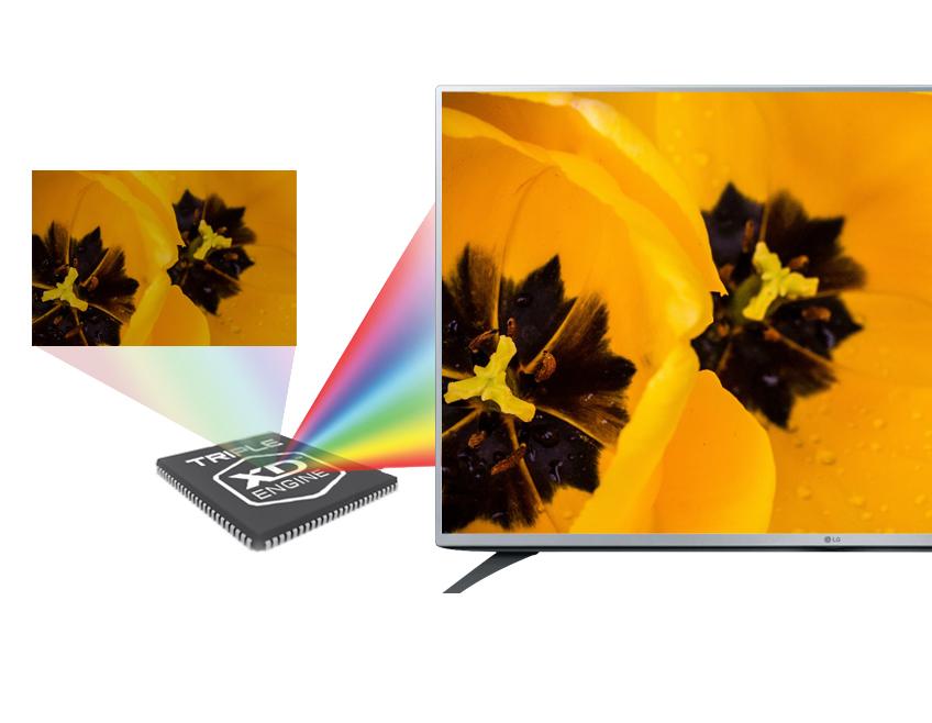 Tivi LED LG 49LF540T 49 inch - Chất lượng hỉnh ảnh Full HD thêm phần đẹp mắt, không nhòe, mờ với công nghệ Triple XD Engine
