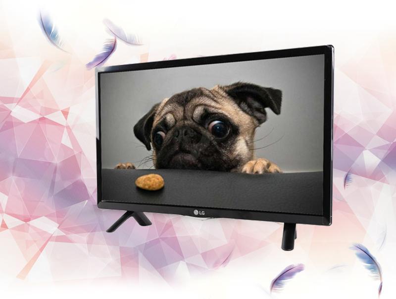 Tivi LED LG 24LF450D 24 inch - Kiểu dáng tinh tế với màn hình 24 inch nhỏ gọn, phù hợp với những không gian khiêm tốn