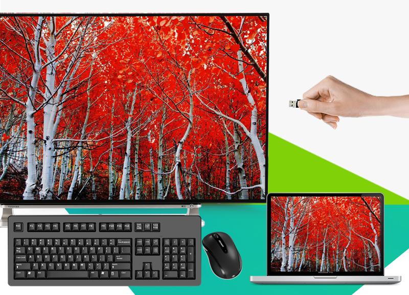 Smart Tivi Toshiba 55 inch 55L5550 - Kết nối với dàn máy, USB, máy tính, chuột bàn phím, tay cầm chơi game…