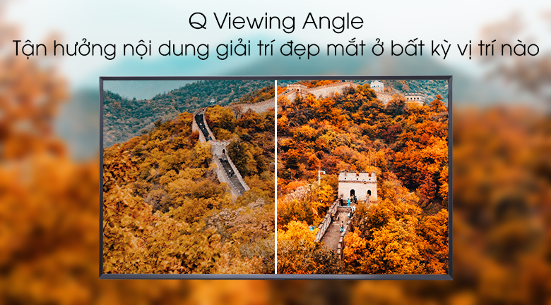 Q Viewing Angle