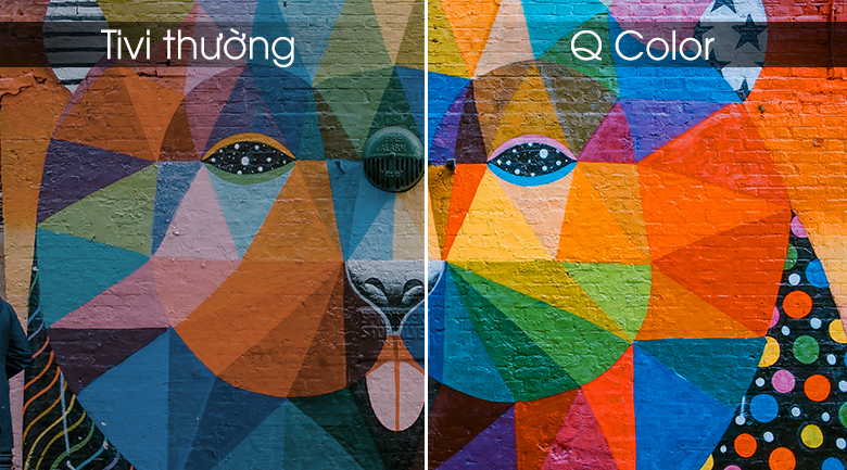 Q Color