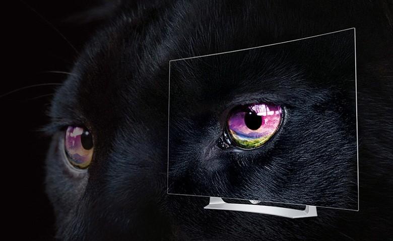 Tivi Oled LG 55EG910 – Màu đen hoàn hảo với công nghệ Tru Black Control