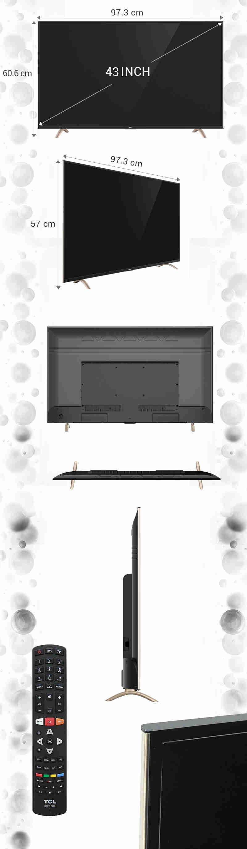 Smart Tivi TCL 43 inch L43P1-SF - Kích thước TV