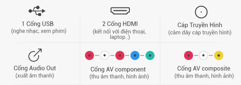 Tivi LG 43 inch 43LH540T - Kết nối