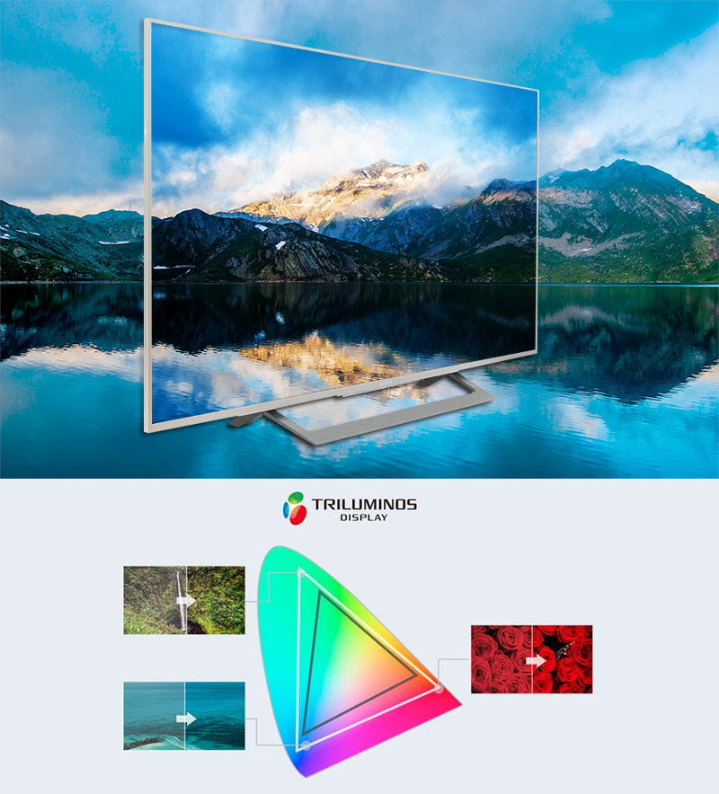 Android Tivi Sony 43 inch KD-43X8000D/S - TRILUMINOS™ Display