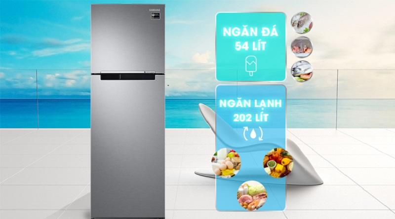 Thiết kế ngăn đá trên khá quen thuộc với người dùng - Tủ lạnh Samsung Inverter 256 lít RT25M4033S8/SV