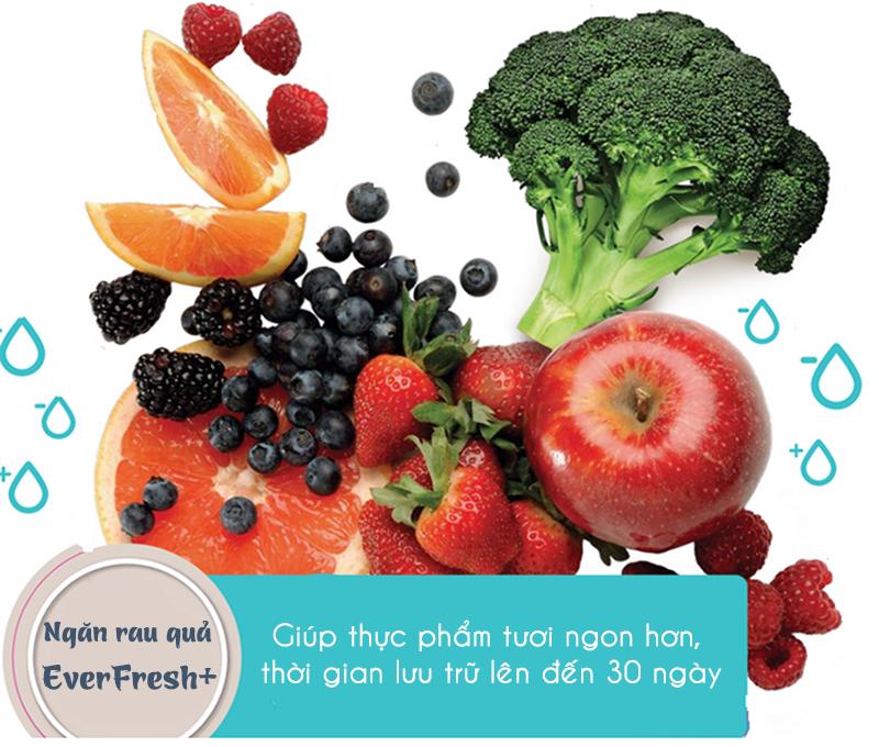 Ngăn rau quả tươi Everfresh+