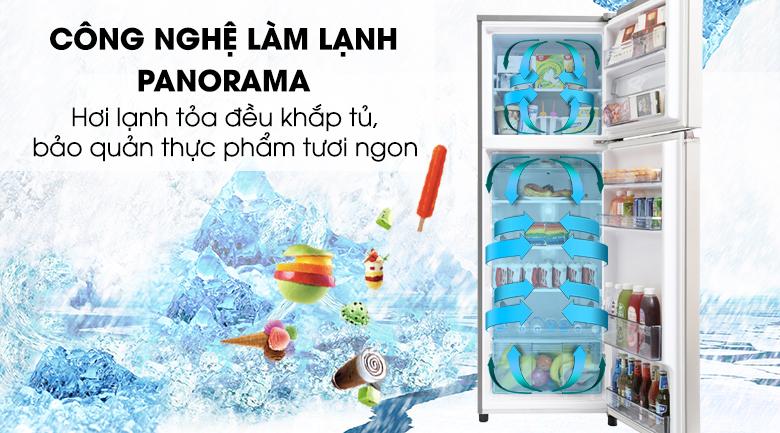 Tủ lạnh Panasonic Inverter 303 lít NR-BL348PSVN - Panorama