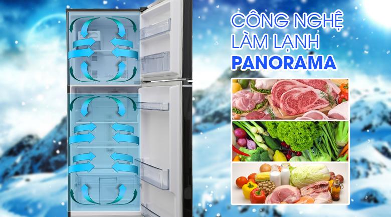 Panorama - Tủ lạnh Panasonic inverter 267 lít NR-BL308PKVN