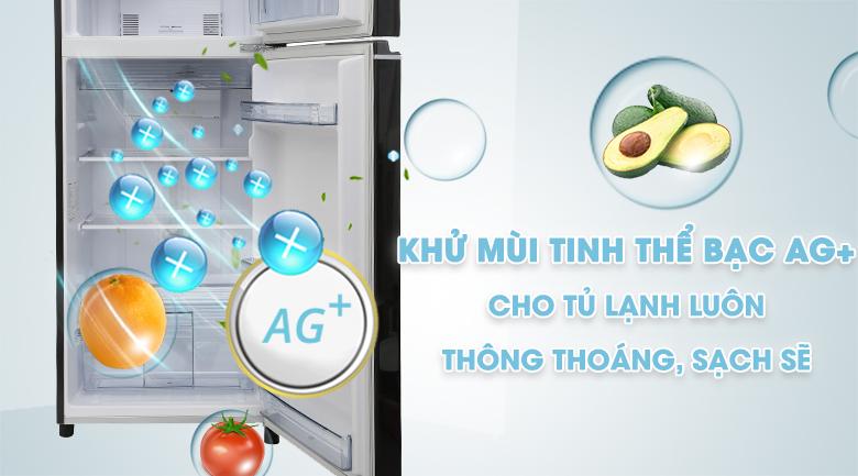 Ag Clean - Tủ lạnh Panasonic inverter 267 lít NR-BL308PKVN