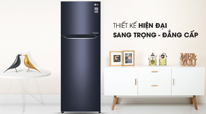 Tủ lạnh LG Inverter 315 lít GN-L315PN