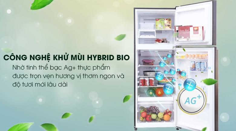 Kháng khuẩn, khử mùi hiệu quả với Hybrid Bio - Tủ lạnh Toshiba Inverter 305 lít GR-MG36VUBZ(XB)