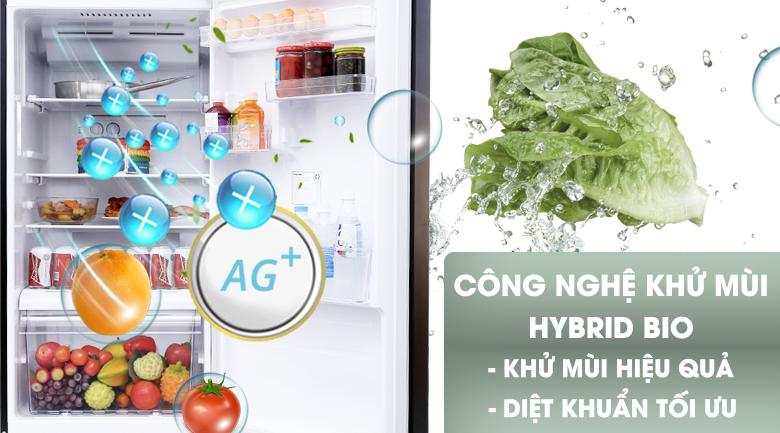Hydro Bio - Tủ lạnh Toshiba Inverter 330 lít GR-MG39VUBZ(XK)