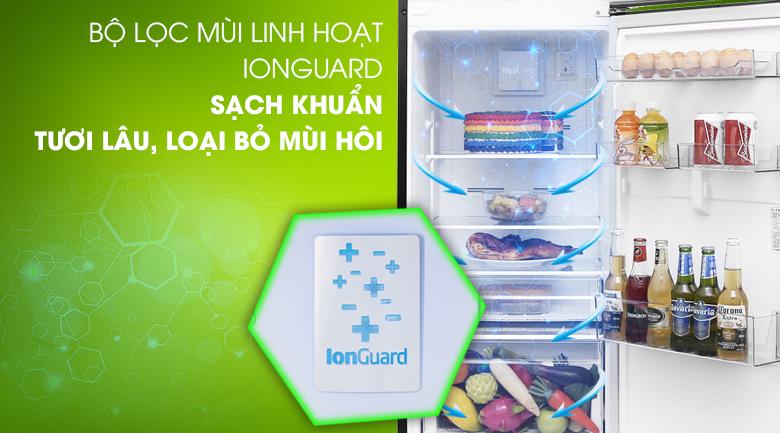 Bộ lọc kháng khuẩn IONGUARD  - Tủ lạnh Beko Inverter 270 lít RDNT270I50VWB