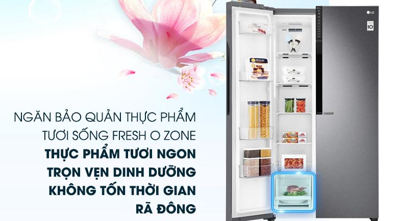 Ngăn trữ thực phẩm tươi sống Fresh O Zone - Tủ lạnh LG Inverter 613 lít GR-B247JDS