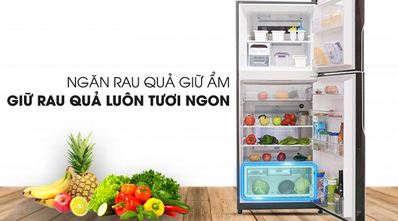 Ngăn bảo quản rau củ hiện đại - Tủ lạnh Hitachi Inverter 365 lít R-VG440PGV3 GBW