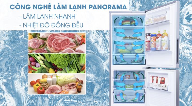 Panorama - Tủ lạnh Panasonic Inverter 255 lít NR-BV289QSVN
