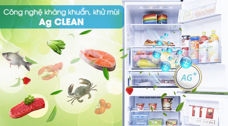 Công nghệ kháng khuẩn tinh thể bạc Ag Clean - Tủ lạnh Panasonic Inverter 255 lít NR-BV289QSVN
