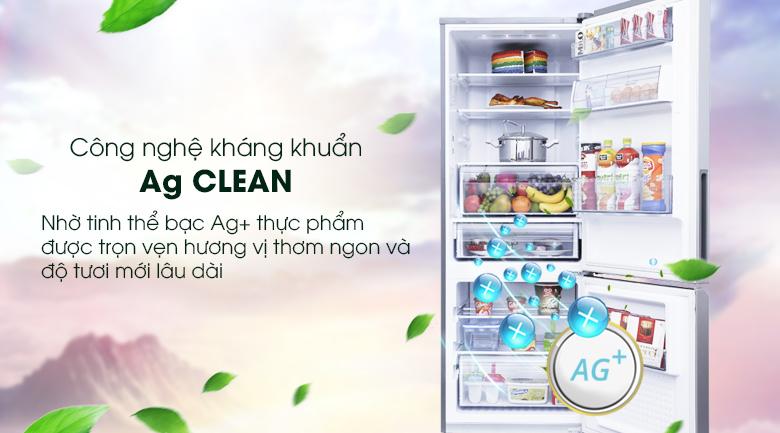 Bộ lọc Ag Clean kháng khuẩn khử mùi tối ưu - Tủ lạnh Panasonic Inverter 290 lít NR-BV329QSVN