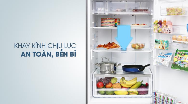 Khay kính chắc chắn, an toàn - Tủ lạnh Electrolux Inverter 531 lít ETB5702GA