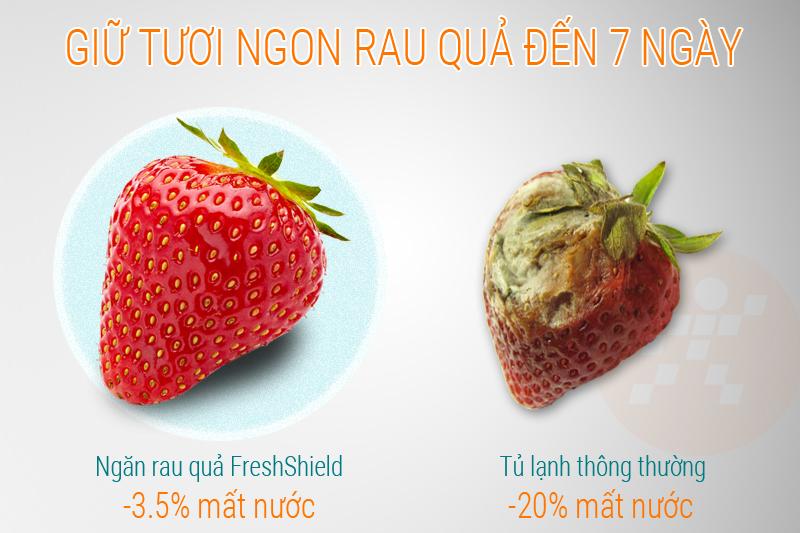 Ngăn rau củ có khả năng cung cấp độ ẩm, cho rau củ luôn tươi mới
