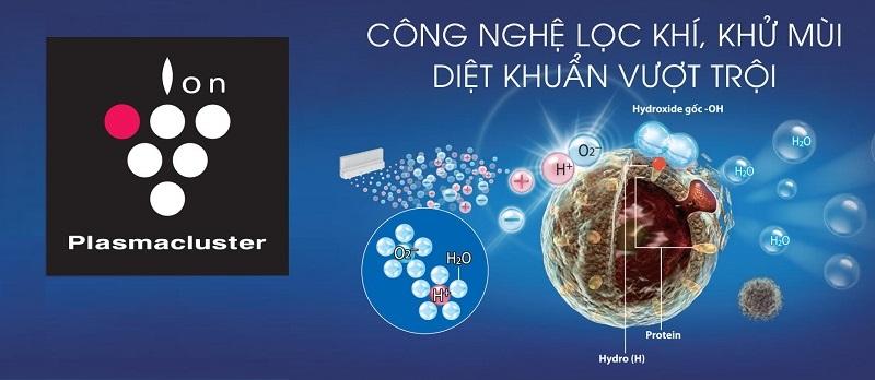 Loại bỏ các bào tử nấm mốc, vi khuẩn gây hại bên trong tủ lạnh với công nghệ Plasmacluster Ion