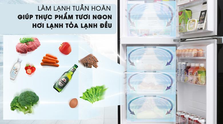 Luồng khí lạnh vòng cung - Tủ lạnh Toshiba Inverter 171 lít GR-M21VUZ1 UKK