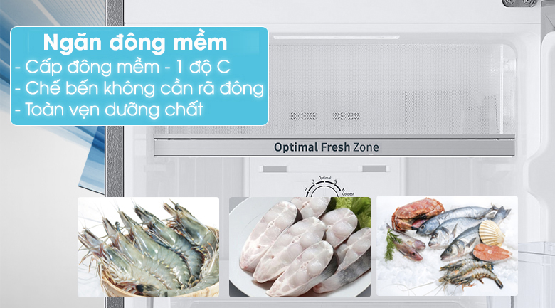 Optimal Fresh Zone - Tủ lạnh Samsung Inverter 236 lít RT22M4032DX/SV