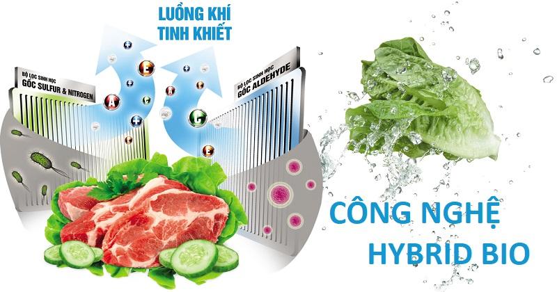 Công nghá» Hybrid Bio loại bá» hoàn toàn má»i vi khuẩn và mùi hôi bên trong tủ lạnh
