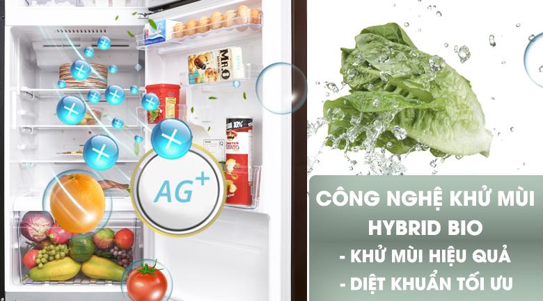 Công nghệ kháng khuẩn, khử mùi Hybrid Bio - Tủ lạnh Toshiba Inverter 305 lít GR-AG36VUBZ XB