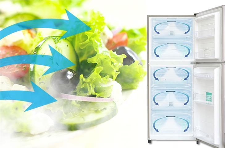 Luồng khí lạnh vòng cung giúp thực phẩm được làm lạnh đồng đều, hiệu quả