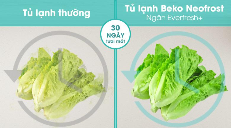 Tủ lạnh Beko Inverter 323 lít RCNT340I50VZX - Công nghệ Neofrost+ Everfresh tăng cường độ ẩm lên đến 95% cho rau củ tươi ngon