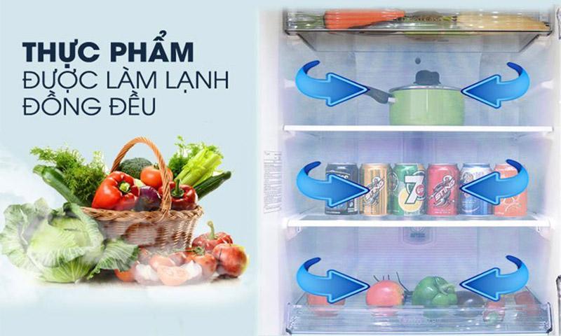 Luồng khí lạnh vòng cung Panorama cho thực phẩm được làm lạnh đồng đều, hiệu quả