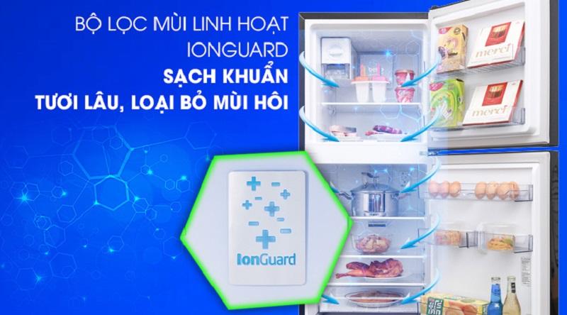 Công nghệ Ion guard kháng khuẩn, khử mùi hiệu quả - Tủ lạnh Beko Inverter 250 lít RDNT250I50VWB