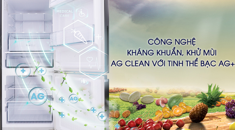 Tủ lạnh Panasonic Inverter 255 lít NR-BV288GKV2 - Ag Clean