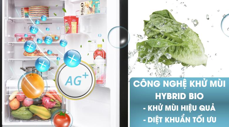 Kháng khuẩn, khử mùi hiệu quả với Hybrid Bio - Tủ lạnh Toshiba Inverter 330 lít GR-AG39VUBZ XK1