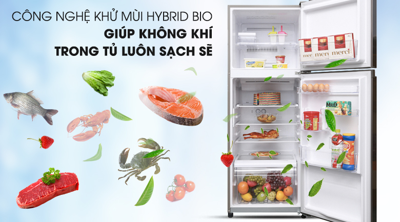 Công nghệ Hybrid Bio loại bỏ hoàn toàn mọi vi khuẩn và mùi hôi bên trong tủ - Tủ lạnh Toshiba Inverter 305 lít GR-A36VUBZ DS1