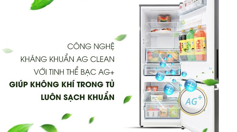 Công nghệ Ag Clean - Tủ lạnh Panasonic Inverter 290 lít NR-BV328GMV2
