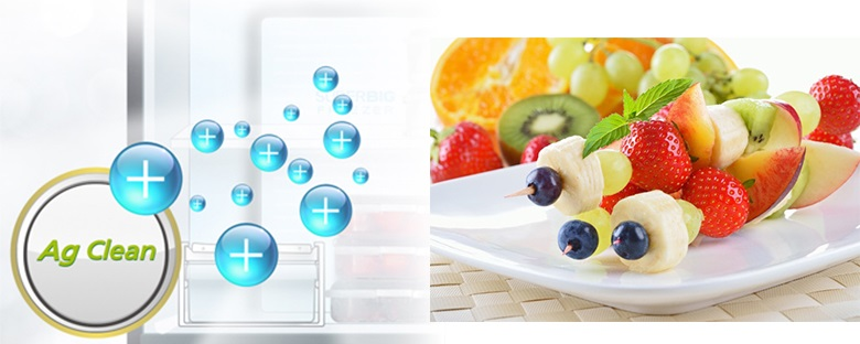 Công nghệ kháng khuẩn Ag Clean - Tủ lạnh Panasonic Inverter 550 lít NR-DZ600GKVN
