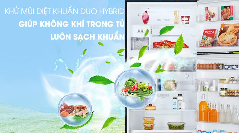 Hệ thống kháng khuẩn khử mùi Duo HyBrid - Tủ lạnh Toshiba Inverter 555 lít GR-AG58VA (X)
