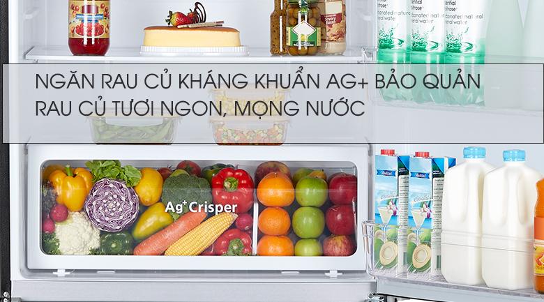 Ngăn rau củ kháng khuẩn, bảo quản được lâu hơn - Tủ lạnh Toshiba Inverter 608 lít GR-AG66VA (XK)