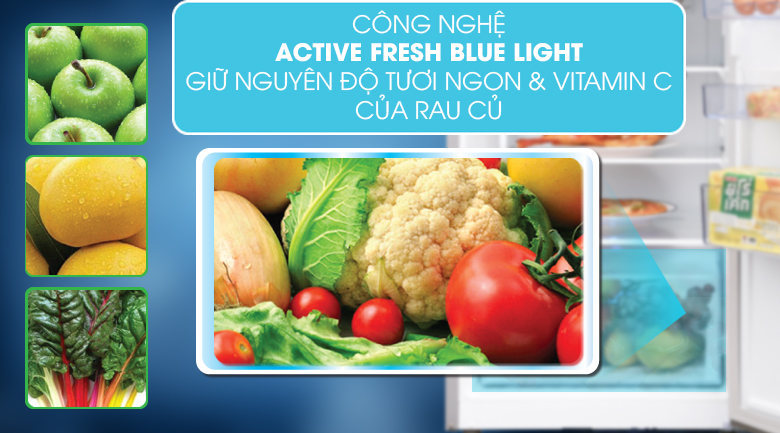 Active Fresh Blue Light - Tủ lạnh Beko Inverter 250 lít RDNT271I50VWB