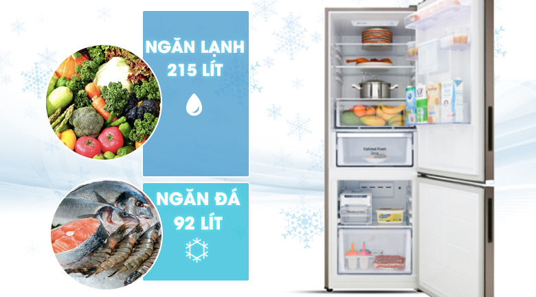 Tổng dung tích tủ lạnh lên đến 307 lít - Tủ lạnh Samsung Inverter 307 lít RB30N4170DX/SV
