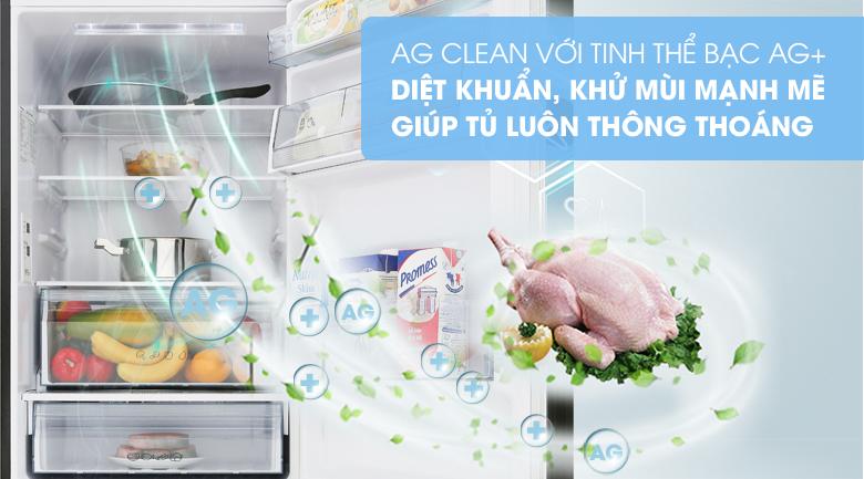 Công nghệ kháng khuẩn Ag Clean với tinh thể bạc Ag+ - Tủ lạnh Panasonic Inverter 255 lít NR-BV280GKVN