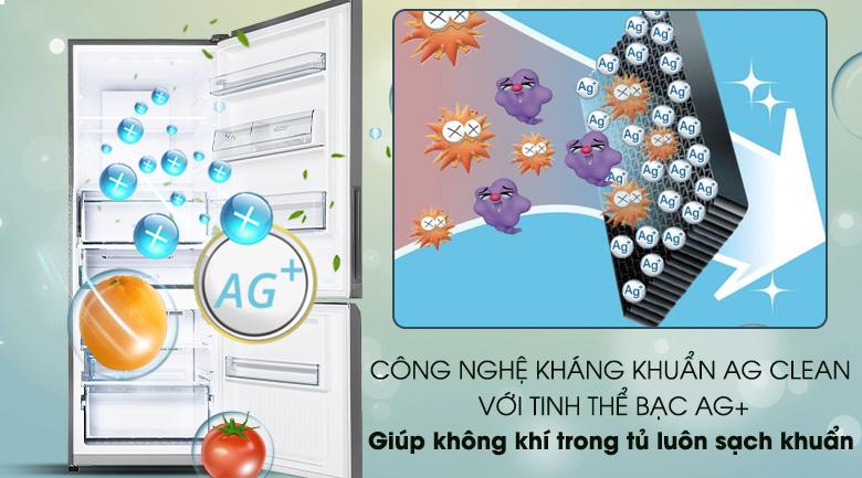 Công nghệ kháng khuẩn Ag Clean với tinh thể bạc Ag+ - Tủ lạnh Panasonic Inverter 290 lít NR-BV320QSVN