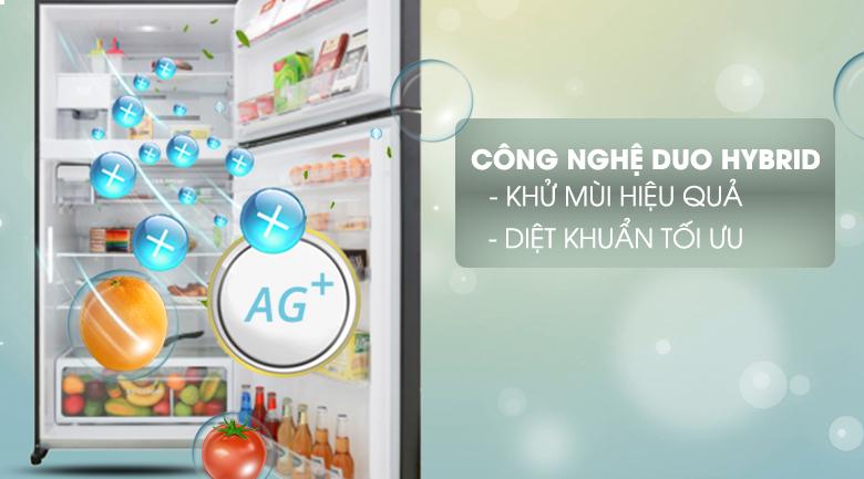 Tủ lạnh Toshiba Inverter 555 lít GR-AG58VA XK- Khử mùi, kháng khuẩn cao bởi công nghệ Duo Hybrid